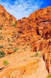 утес красного цвета парка Невады каньона национальный Стоковое Фото