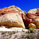 утес красного цвета парка Невады каньона национальный Стоковое Изображение RF