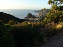 Утес львов пляжа Piha и за пределами стоковая фотография rf