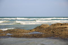 Утес на пляже Стоковая Фотография RF