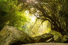 Утес на сухом водопаде Стоковые Фото