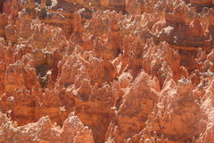 утес образований каньона bryce Стоковые Изображения RF