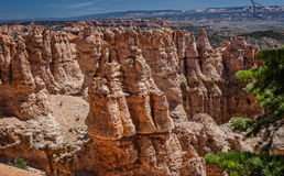 утес образования каньона bryce Стоковая Фотография