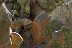 Утес песчаника в лесе Фонтенбло стоковое изображение rf