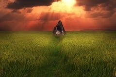 утес пирамидки Стоковое фото RF