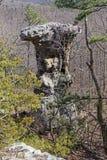 Утес постамента в лесе Стоковое Изображение RF