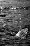Утес прыгая в океане Стоковая Фотография RF