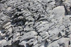 утес размывания береговой линии Стоковое Изображение RF