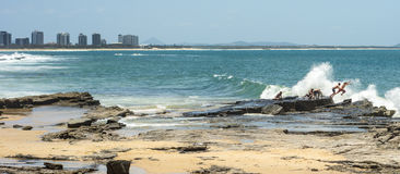 Утес скача побережье Квинсленд солнечности Maloolaba стоковое фото rf