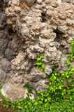 Утес сталактита Стоковое Изображение