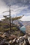 Утес Banjska точки зрения на горе Тары смотря вниз к каньону реки Drina, западной Сербии стоковые изображения rf