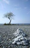 утес philippines камушка сборников пляжа Стоковые Фото