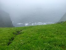 Утес skellig Skellig Майкл, Ирландия Стоковая Фотография RF
