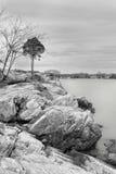 Море Stamford Коннектикут стоковые фотографии rf