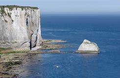 утес Vaudieu на побережье Etretat Стоковое Изображение RF