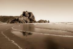 утес zealand piha льва пляжа новый Стоковое Изображение