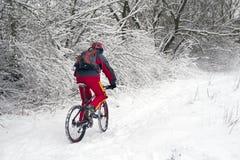 Утеха идти в зиму Стоковое Фото