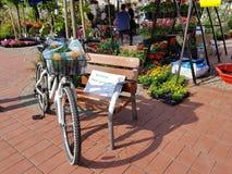 Утеха цветка на велосипеде стоковые фото
