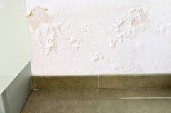 Утечка воды в стене стоковое фото rf