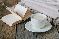 Утешьте чай с теплыми шотландкой и помадками шерстей Стоковое Изображение