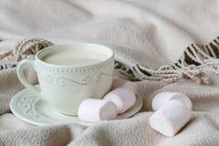 Утешьте чай с теплыми шотландкой и помадками шерстей Стоковое фото RF