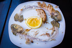Утили зажаренных рыб Стоковая Фотография
