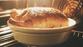 Утка жаря в духовке в печи сток-видео