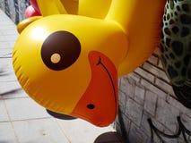 Утка игрушки пляжа бассейна кольца желтая раздувная Стоковые Фотографии RF