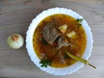 Утка супа Питание Стоковое Изображение RF