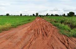 Утомляйте след много корабль на дороге грязи почвы в сельской местности в сезоне дождей стоковое изображение rf
