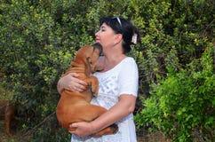 Утомлянный щенок boerboel спрашивает держать его в руках женщины стоковые изображения rf
