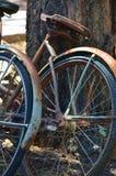 Утомленные старые велосипеды положенные вверх против дерева Стоковая Фотография RF