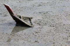 утонутая шлюпка Стоковое Изображение RF