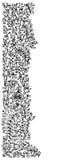 уточненная виньетка Стоковое фото RF