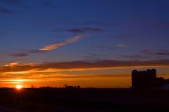 Утра в поле Стоковые Фотографии RF