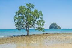 Утреннее время в острове Таиланда Стоковые Изображения