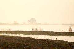 Утро весны на озере Стоковое Фото