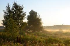 Утро в августе Стоковые Фото
