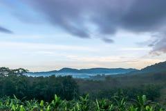 Утро в горах в середине леса Стоковое Изображение