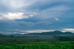 Утро в горах в середине леса Стоковая Фотография