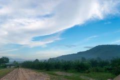 Утро в горах в середине леса Стоковое фото RF
