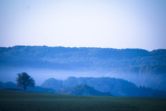 Утро в Дании Стоковая Фотография