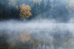 Утро в октябре Стоковое Изображение