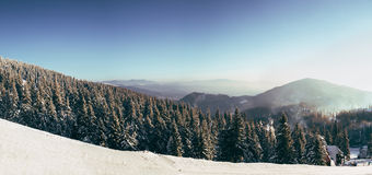 Утро в прикарпатских горах Dragobrat Стоковое Изображение