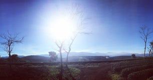 Утро в sungate стоковое фото rf
