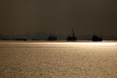 утро гавани светлое Стоковое Фото