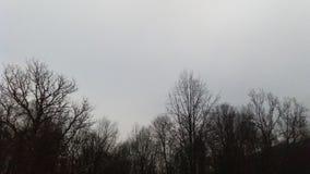 утро европы Стоковое Изображение RF