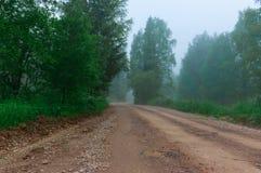 Утро лета пасмурное, лес дороги, деревья тумана Стоковые Изображения RF