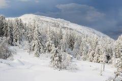 Утро зимы в Telemark Норвегии Стоковые Изображения