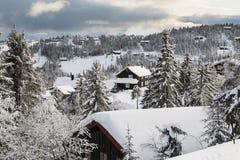 Утро зимы в Telemark Норвегии Стоковая Фотография